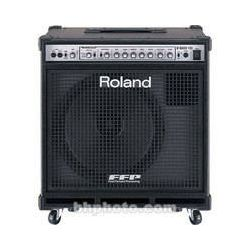 Roland  330W Bass Amplifier D-BASS 115 B&H Photo Video