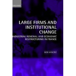 Large Firms and Institutional Change, Industrial Renewal and Economic Restructuring in France by Bob Hancke, 9780199252053.