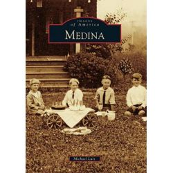 Medina by Michael Luis, 9780738574394.