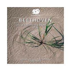 Hörbücher: Beethoven  von Ludwig van Beethoven von Rochester Philharmonic Orchestra