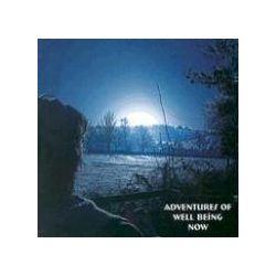Hörbücher: Adventures of Well Being Now  von Nick Kemp