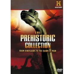 Prehistoric Collection, The: From Dinosaurs To The Sawn Of Man (DVD)