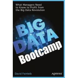 Big Data Bootcamp, What Managers Need to Know to Profit from the Big Data Revolution by David Feinleib, 9781484200414.