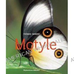 Motyle - Thomas Marent