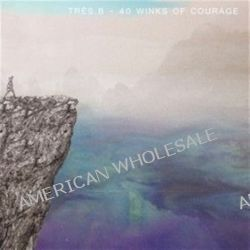40 Winks Of Courage - Tres.b