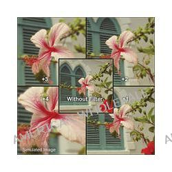 B+W  60mm Close-up +3 Lens (NL3) 65-076250 B&H Photo Video