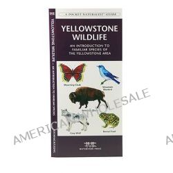 Yellowstone Wildlife, An Introduction to Familiar Species of Yellowstone Area by Senior Consultant James Kavanagh, 9781583553169.