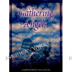 A Gathering of Angels, Seeking Healing After An Infant's Death by Vicki Leland, 9780879464271.