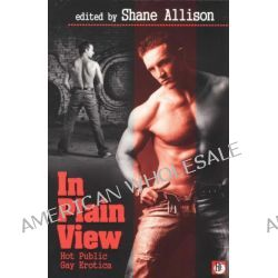 In Play View, Hot Public Gay Erotica by Shane Allison, 9781602822368.