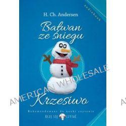 Bałwan ze śniegu - audiobook (CD) - Hans Ch. Andersen