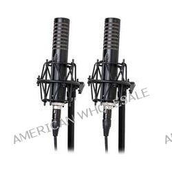 Royer Labs R-101 Ribbon Microphone Matched Pair R-101-MP B&H