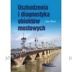 Uszkodzenia i diagnostyka obiektów mostowych - Jan Bień