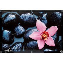 nowoczesny obraz, fotografia artystyczna, motyw natury, kamienie, 00666