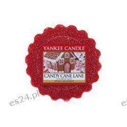YC wosk CANDY CANE LANE