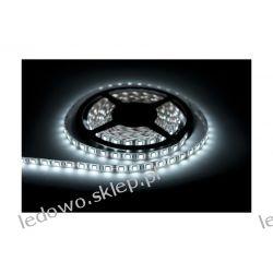 taśma LED 24W/5m, 12V DC, wodoodporna, 300 diod SMD3528, barwa biała-zimna