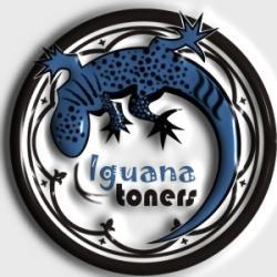 Toner Iguana 100% NEW Q2612A do HP LJ 1010 / 1012 / 1015 / 1018 / 1020 / 1022 / 1025 / 3015 / 3020 / 3030 / 3050 / 3052 / 3055 na 2,5 tys. 12A