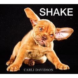 Shake by Carli Davidson, 9780062242648.