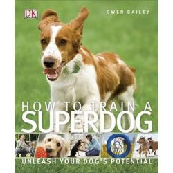 How to Train a Superdog by Gwen Bailey, 9781409349808.