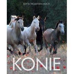 Konie - Edyta Trojańska-Koch