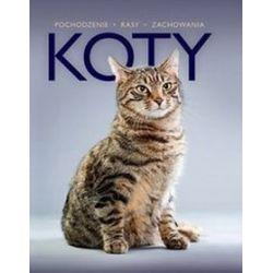 Koty -