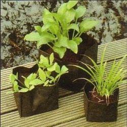 Wasserpflanzentüten CarePlant 25 x 25 x 20 cm