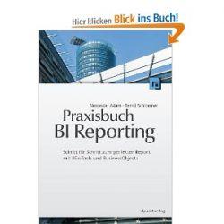 Praxisbuch BI Reporting: Schritt-für-Schritt zum perfekten Report mit BEx Tools und BusinessObjects [Gebundene Ausgabe] [Gebundene Ausgabe]