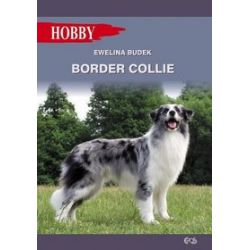 Border collie - Ewelina Budek