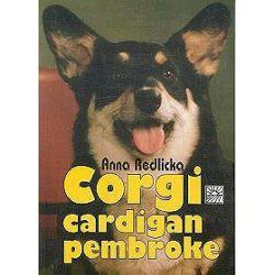Corgi Cardigan Pembroke - Anna Redlicka
