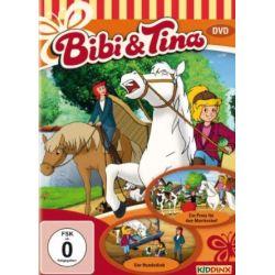 Bibi und Tina - Ein Preis für den Martinshof/Der Hundedieb