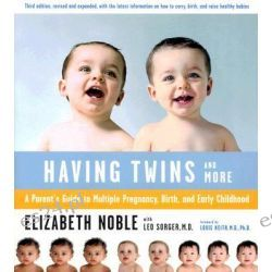 Having Twins - and More, Every Parent's Guide to Pregnancy, Birth and Early Childhood by Elizabeth Noble, 9780618138739.
