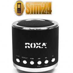 Przenośny głośnik zewnętrzny z MP3 i radiem - czar