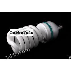 F&V Żarówka światła stałego 65/300W 5500K E27