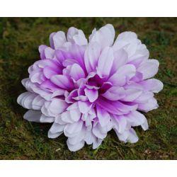 Chryzantema fioletowa 10cm Główki...