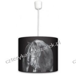 Lampa wisząca Black Horse
