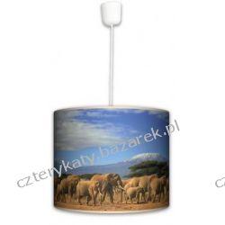 Lampa wisząca Sahara Biurka