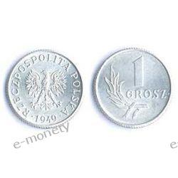 1 grosz 1949 rok menniczy Monety groszowe