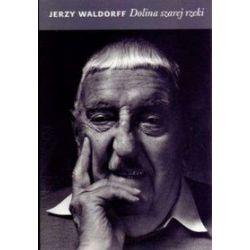 Dolina szarej rzeki - Jerzy Waldorff