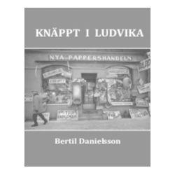 Knäppt i Ludvika - Bertil Danielsson - Bok (9789197893213)
