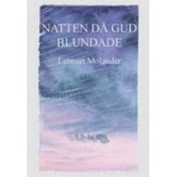 Natten då Gud blundade : Vidingeolyckan - Lennart Molander - Bok (9789185385058)