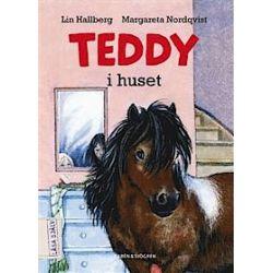 Teddy i huset - Lin Hallberg - Bok (9789129668148)