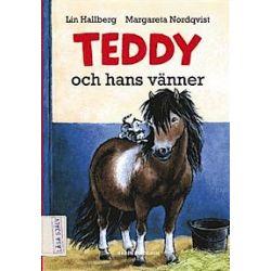 Teddy och hans vänner - Lin Hallberg - Bok (9789129669534)