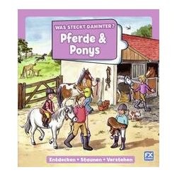Bücher: Was steckt dahinter? Pferde und Ponys  von Double-u double-u GmbH
