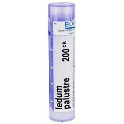 Boiron Ledum Palustre 200 CK 80 Pellets