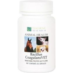 Thorne Research Animal Health Bacillus Coagulansvet 60 Capsules
