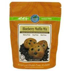 Authentic Foods Gluten Free Muffin Mix Blueberry 17 Oz