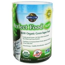 Garden of Life Perfect Food Raw Organic Green Super Food 17 Oz