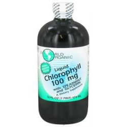 World Organic Liquid Chlorophyll with Spearmint and Glycerin 100 MG 16 Oz