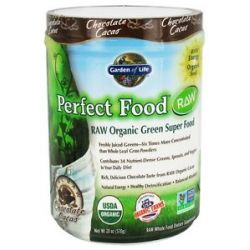 Garden of Life Perfect Food Raw Organic Green Super Food Chocolate Cacao 20