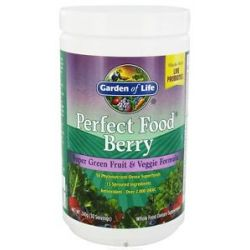 Garden of Life Perfect Food Super Green Fruit Veggie Formula Berry 240