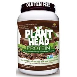 Genceutic Naturals Plant Head Protein Chocolate 1 8 Lbs